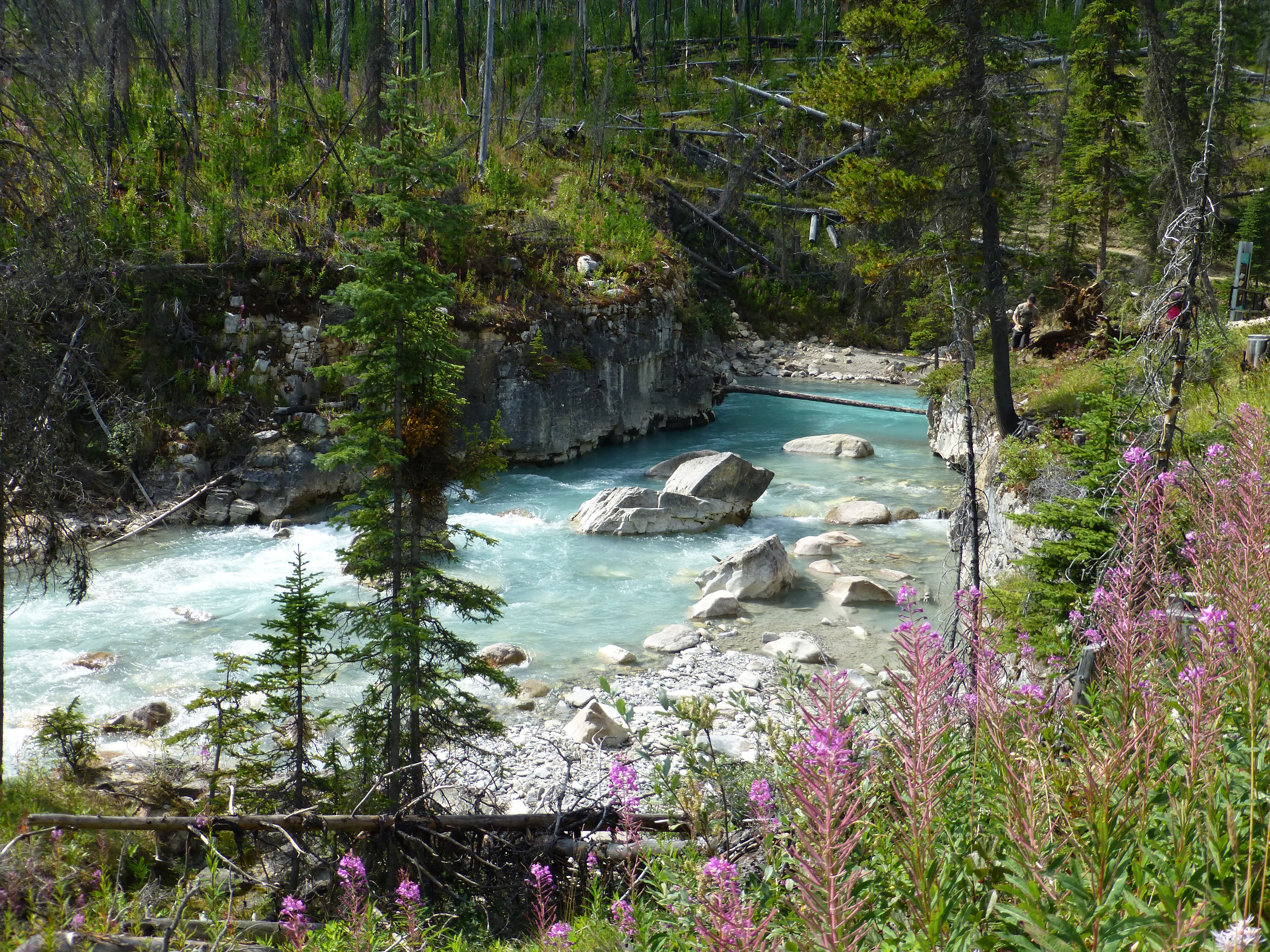 Banff And Kootenay National Parks Canada Day 11